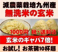 圧倒的に美味しい玄米(発芽玄米)は白米モードで炊ける無洗米 炊きやすくて食べやすい玄米は健...