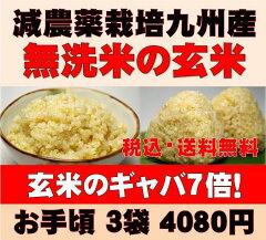 【ふるさと割対象】玄米/発芽玄米/佐賀県産の玄氣4.5kg【1.5kg×3袋】 …