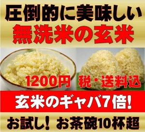 無農薬玄米が原料の発芽玄米玄米/玄氣900g/6合分お試し真空パック【送料無料】無農薬(農薬化…