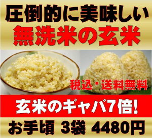 圧倒的に美味しい発芽玄米・玄氣は白米モードで楽々炊飯できる無洗米!無農薬(農薬・化学肥料...