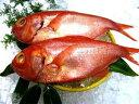 [新鮮!厳選☆産地直送]鮮度抜群!獲れたばかりの大変美味しい煮つけに最高な金目鯛を産地よ...