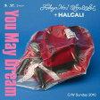 【中古】You May Dream/TOKYO No.1 SOUL SET + HALCALICDシングル/邦楽ヒップホップ