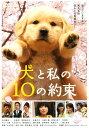 【中古】犬と私の10の約束 【DVD】/田中麗奈DVD/邦画ファミリー&動物