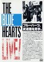 【中古】THE BLUE HEARTS LIVE 日比谷野音&日本武道 【DVD】/ザ・ブルーハーツDVD/映像その他音楽