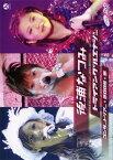 【中古】後浦なつみコンサートツアー2005春「トライアングルエナジー」/後浦なつみDVD/映像その他音楽