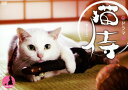 【SS中P5倍】【中古】ドラマ 猫侍 BOX 【DVD】/北村一輝DVD/邦画TV