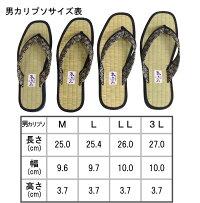 男性物カリプソサイズ表記