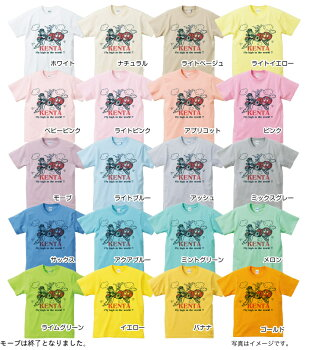 名入れTシャツ(カスタムオーダー可)【SKYTRIP】(両面プリント前後)【楽ギフ_包装】【楽ギフ_のし宛書】【楽ギフ_メッセ入力】【楽ギフ_名入れ】