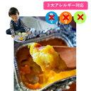 パンプキングラタン 60g(8個入り)【3大アレルギー対応(卵・乳・小麦不使用)夕食朝食 子供のおやつ イベント行事】