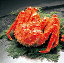 タラバ蟹 激安