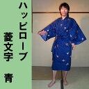 H16hisimoji_bl