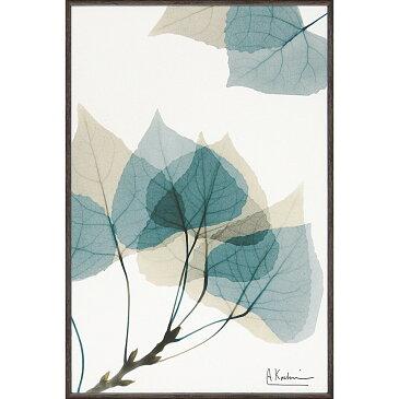 壁掛け飾り 絵画 おしゃれ かわいい XR-03808 /X RAY キャンバスアート 「リーフ1(Sサイズ)」 壁掛用 XR-03808
