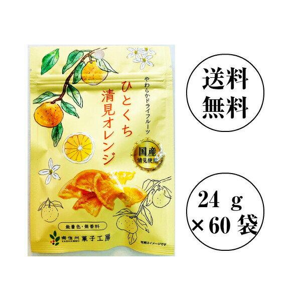 南信州菓子工房 ひとくち清見オレンジ 24g×60袋 【送料無料】国産 ドライフルーツ包装不可