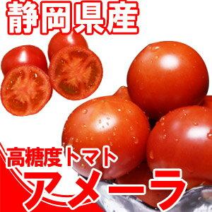 [ギフトパーク]フルーツトマト『高糖度トマト』アメーラトマト1kg 父の日 お中元 御中元 暑中見舞い お盆
