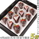 P5倍[12/17迄]クリスマス お菓子 いちごチョコレート...
