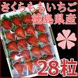 さくらももいちご 徳島県産 28粒 化粧箱入り(小粒サイズ)【送料無料】いちご ギフト 苺 イチゴ