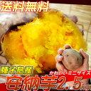 【11月以降の発送】【わけあり】手のひらに収まるほどの小さい安納芋。今なら2セットご購入でも...