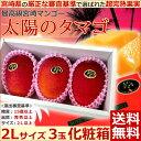 【シーズンオフ】【宮崎マンゴー 太陽のタマゴ 2Lサイズ3玉...