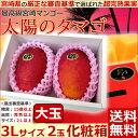 【シーズンオフ】【宮崎マンゴー 太陽のタマゴ 大玉3Lサイズ...