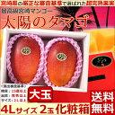【シーズンオフ】【宮崎マンゴー 太陽のタマゴ 超大玉4Lサイ...