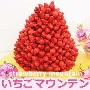 いちご盛りだくさん!ハッピーカラフルーツいちごマウンテン|誕生日ケーキや記念日に ハッピー...