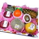 [ギフトパーク]果物 ギフト お祝い 旬の果物詰め合わせ【水】メロン入り フルーツ 盛り合わせ 送料 ...