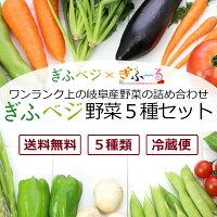【送料無料】【限定50セット】ぎふベジ野菜セット(岐阜産野菜5種)[6/30(金)まで]