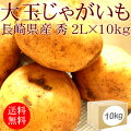 [新じゃが箱]長崎県産新じゃがいも2Lx10kg[業務用]【野菜便】【常温便】【送料無料】【代引き不可】