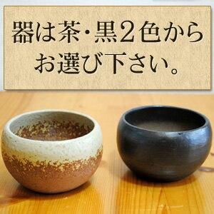 お正月のおしゃれなインテリアに!カンタン!手作り情景盆栽 黒松Bセット【季節限定】美濃焼の味のある器です。