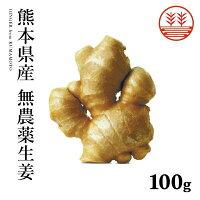 熊本県産無農薬生姜100g