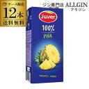 送料無料 Juver フベル パイナップル100%ジュース 1L×12本 ケース販売 100%濃縮還元 長S