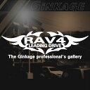 NEWエンブレム トヨタ RAV4 車 ステッカー 車用 リアガラス ...