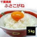 【送料無料】【白米】千葉県産 ふさこがね 5kg【令和01年産】地域によっては追加送料がかかります