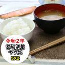【宮城県WEB物産展】 クーポン利用で10%OFF!  宮城産つや姫 10kg(5Kgx2) 令和2年産 乾式無洗米