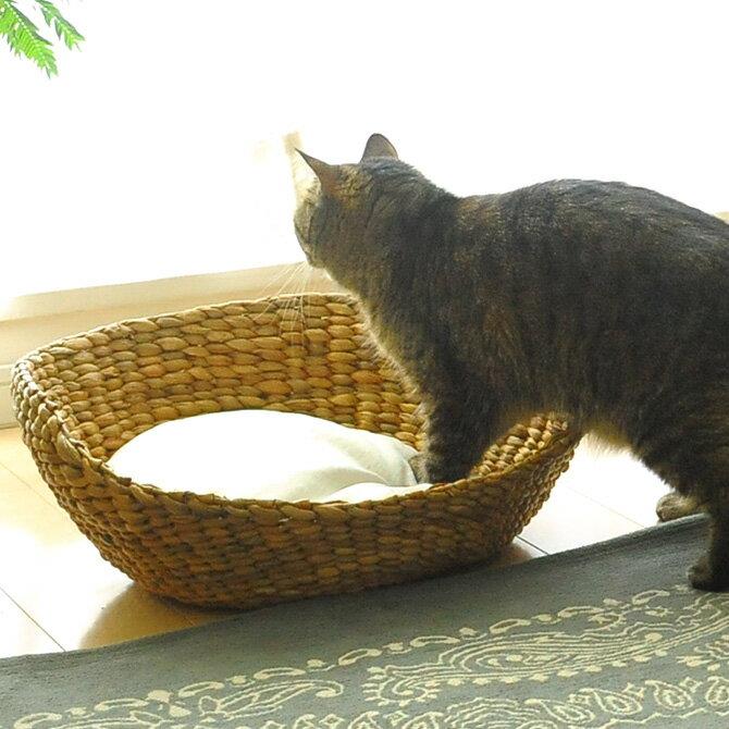 ナチュラルラウンドベッド ナチュラル 【メッセージカード対応】 キャットベッド 猫用ベッド ベッド ハウス クッション 犬用 かわいい おしゃれ 猫用 ネコ いぬ 犬 イヌ