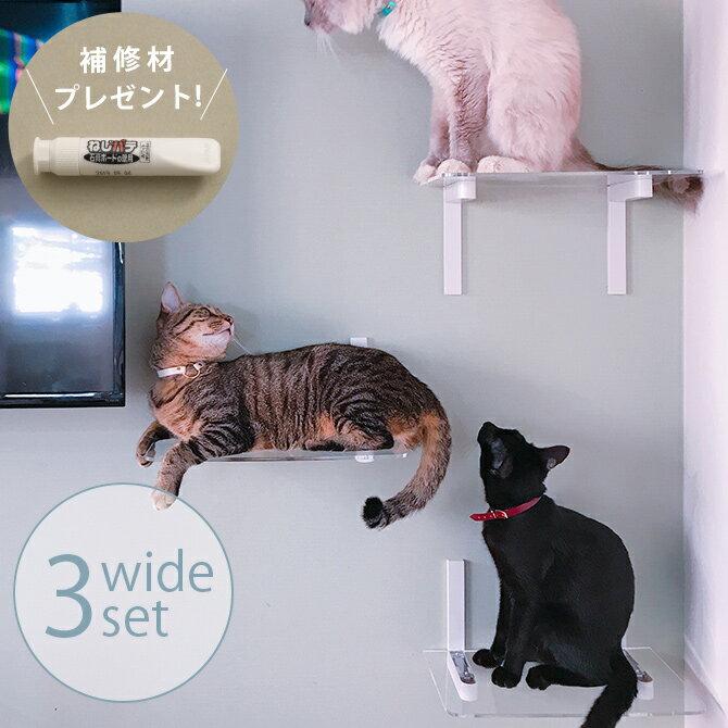 キャットステップ animacolle アニマコレ Catroad+ キャット ワイドステップ 3点セット cp259 【メッセージカード対応】 猫 キャットステップ キャットウォーク 壁 DIY セット キャットタワー 透明 クリア おしゃれ 【あす楽】