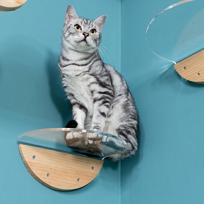 [3月下旬 予約商品] MYZOO マイズー Round Lack ラウンドラック クリア 猫 キャットステップ キャットウォーク 壁付け 壁掛け 透明 シンプル 丸形 円形 アクリル