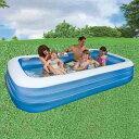 プール インテックス ビニールプール 家庭用プール 大型 305cm 58484 ジャイアントファミリープール 子供用プール 大型プール 水あそび アウトドア用品 レジャー用品 送料無料