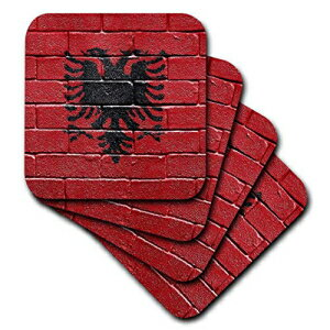 3dRose National Flag of Albania Painted onto a Br