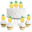 Big Dot of Happiness Tropical Pineapple - Dessert Cupcake Toppers - Summer Party Clear Treat Picks - Set of 24