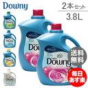 Downy ダウニー P&G ウルトラダウニー 3.8L 2本セット ...