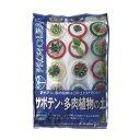 【プロトリーフ】サボテン・多肉植物の土 5リットル