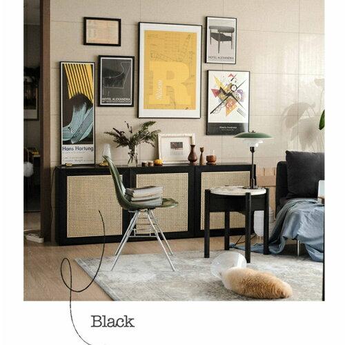 【ミスナイロン】ケインドア Cane Door ブラック IKEA対応