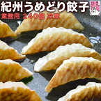 餃子(ギョウザ)【業務用】紀州うめどり使用240個(約4.5kg)