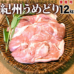 【業務用】紀州うめどり モモ肉 12kg 【送料無料】 鶏肉 もも肉 国産とり肉ご当地鶏肉【smtb-k】【ky】【sswf1】