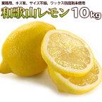 レモン訳あり送料無料フルーツ・果物ノーワックス業務用レモネード塩レモンレモン果汁に最適