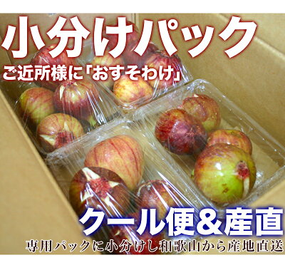 いちじく生1.5kg朝採り完熟いちじく送料無料訳あり食品フルーツ・果物イチジク無花果産地直送和歌山県産いちじく生お取り寄せ