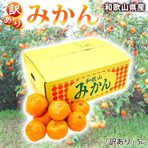 みかん 5kg 和歌山県産【訳あり】ご自宅用