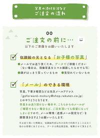 乳歯ケース【長方形】