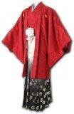 【レンタル】【成人式】安心の最大1ヶ月レンタル可能 男性用レンタル紋付き袴フルセット-7119